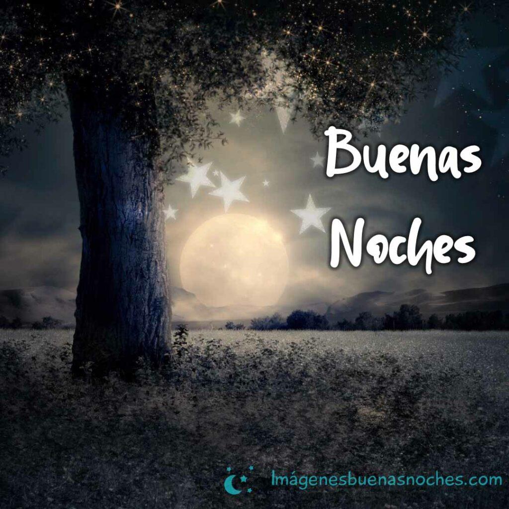 Imágenes buenos noches bonitas